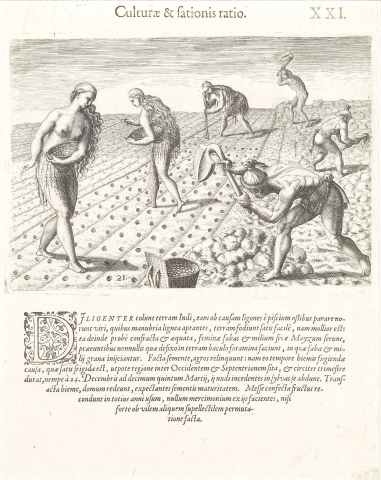 Plate XXI. Cultivation and Sowing