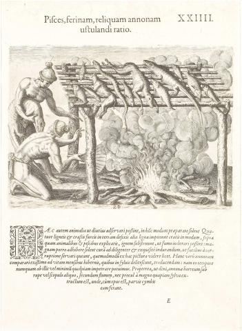 Plate XXIV. Mode of Drying Fish, Game and other Provisions