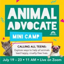 Animal Advocate Mini Camp July 19-23 11 am on Zoom